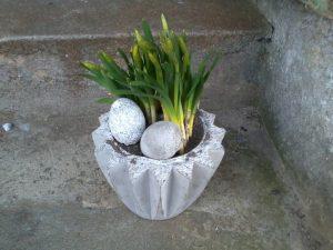beton urtepotte og æg